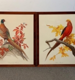 421. Roger Tory Peterson. Two Lithographs, Pheasants |  $270