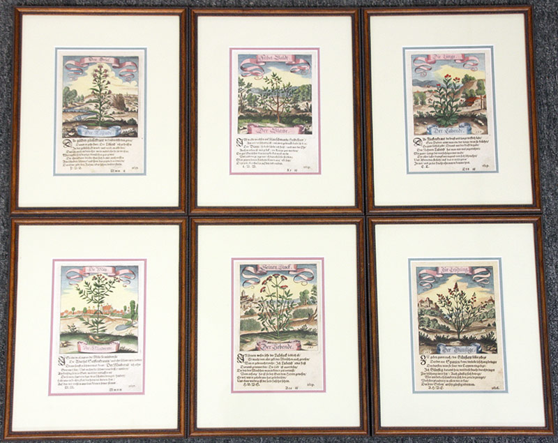 3. 6 17th C. German Hand-colored Botanical Engravings. $676.50