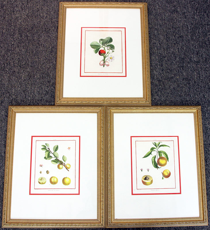 10. Three Traite Des Arbres Fruitiers Engravings	. $98.40